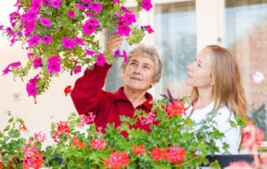 Companionship Services for Seniors