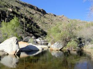 Sabino Canyon landscape
